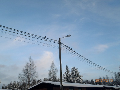 vapaudenkatu jyväskylä Kuusamo